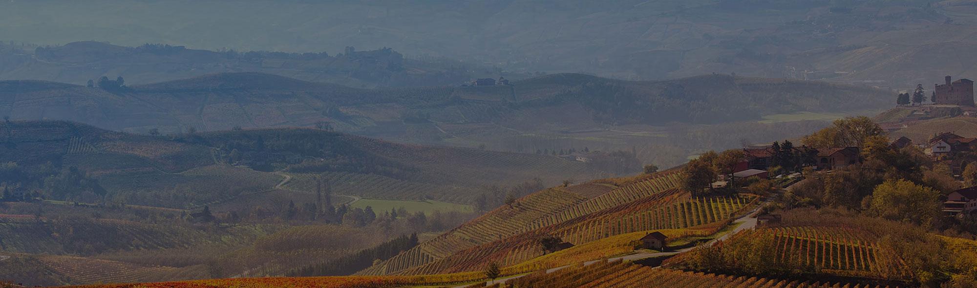 banner image hills